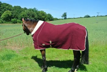 Ruggles Double Bonded Fleece